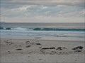 Image for Mollymook Beach, Shoalhaven, NSW