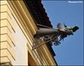 Image for Gargoyle at Daliborka house / Chrlic na Daliborce - Louny (North Bohemia)