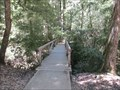 Image for Opal Creek Bridge - Boulder Creek, CA