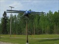 Image for World's Largest Dragonfly in Wabamun