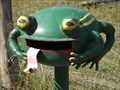 Image for Happy Frog - Ellenborough, NSW, Australia