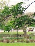 Image for Twin Springs Circular Garden - Siloam Springs, AR