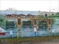 Image for American Canoe Association Mural - Fredericksburg VA