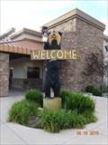 Image for Bear Statue - Black Bear Diner - Fernley, Nevada