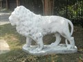 Image for Leon High School Lion #2 - Tallahassee, FL