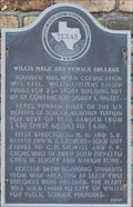 Image for Willis Male and Female College
