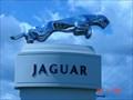 Image for Jaguar Emblem