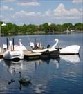 Image for Lake Eola Swan Boats - Orlando, Florida, USA.