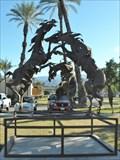 Image for Wild Stallions - Palm Desert CA