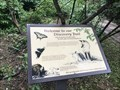 Image for Welcome to our Discovery Trail - Abingdon, MD