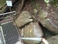 Image for Labertouche Cave
