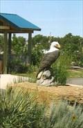 Image for Eagle - Buffalo, SD