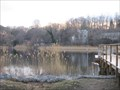 Image for WS - Pine Lake
