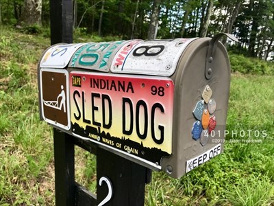 A mushing-themed mail box covered in license plates accompanies the sign