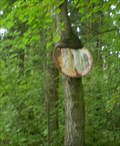 Image for Tree eating prohibition sign, Moravian Karst, Czech Republic