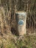 Image for Borne kilométrique n°100, Bord de l'Yonne - France