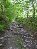 Image for Sarn Helen - Rhiwddolion, Betws-y-Coed, Conwy, North Wales, UK