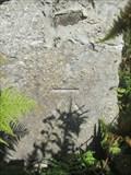 Image for Cut Mark - Melin Meiarth, Derwen, Denbighshire, Wales