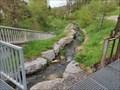 Image for Fish Ladder - Steinach River Gündringen, Germany, BW