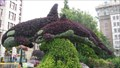 Image for Orca Topiary