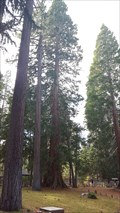 Image for Sequoia at Tallac Historic Site - South Lake Tahoe, CA