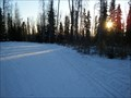 Image for UAF XX Ski Trails, Fairbanks, AK