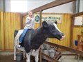 Image for Folly Farm - Adventure Park & Zoo - Begelly, Pembrokeshire, Wales.