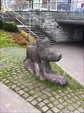 Image for Wild Boar - Olten, SO, Switzerland