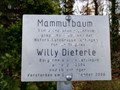 Image for Willy-Dieterle-Mammutbaum - Jettingen, Germany, BW