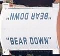 Image for Bear Down - Tucson, Arizona