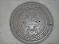 Image for Olympic Manhole Cover - Provo, UT