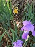 Image for Fairy Door by The Little Green Library - Stillwater, OK