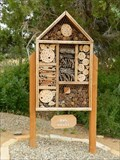Image for Canyon of the Ancients Visitor Center Insect House - Dolores, Colorado