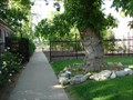 Image for Gilgal Sculpture Garden