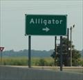 Image for Alligator -- US 61, nr Alligator MS