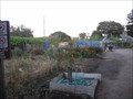 Image for Beach Flats Community Garden - Santa Cruz, CA