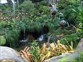 Image for Pandora Falls - Lake Buena Vista, FL