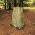Image for O.S. Triangulation Pillar - Strathfinella Hill, Aberdeenshire.