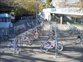 Image for California State University Sacramento -- bicycle tenders