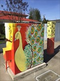 Image for Peacocks and Sunsets Utility Box - San Jose, California