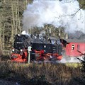 Image for Trans-Harz Railway - Sorge, Germany