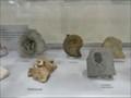 Image for Fossil Display at Centennial Centre for Interdisciplinary Science - Edmonton, Alberta