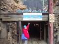 Image for Le Roi Mine - Rossland, BC