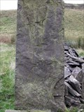 Image for Cut Mark north of Cowpe Moss