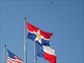 Image for Municipal Flags - Love Field Airport-  Dallas Texas