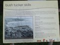 Image for Bush tucker Skills, Nobbys Beach, NSW, Australia