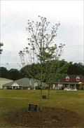 Image for Murder Victim Remembered - Douglasville, GA