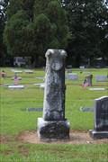 Image for John J. Elam -- Rose Hill Cemetery, Hope AR