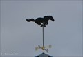 Image for Mustang Weathervane on DPW Salt Shed - Norwood, MA