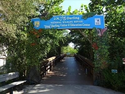 Birdwatching Locations - Pigott/Stegman Birders Room, Sanibel Island, Florida, USA